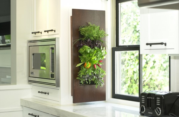 immobilier Cuisine 972