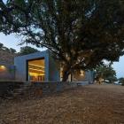 Maison Conception de maison de grec moderne explorant la conception traditionnelle et à jour