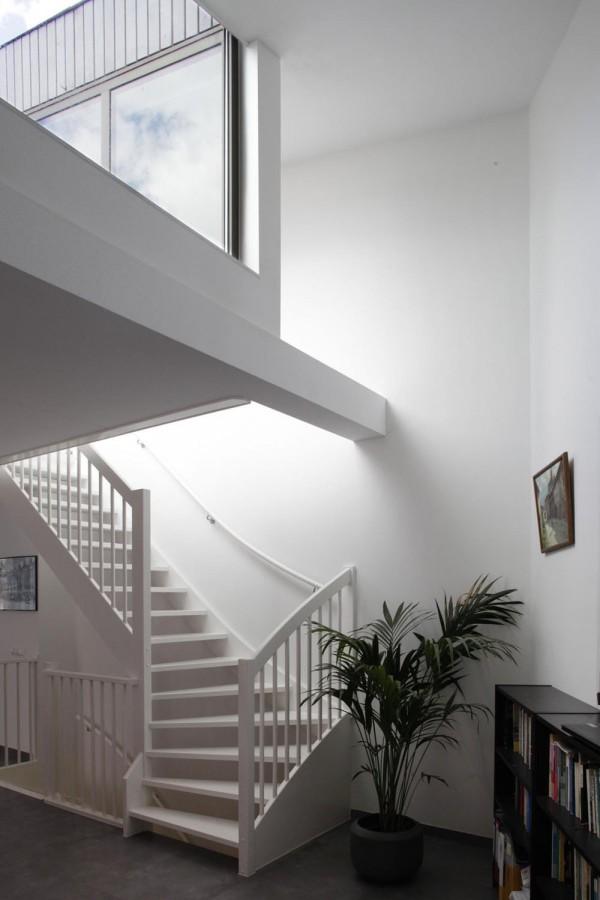 immobilier Maison 81