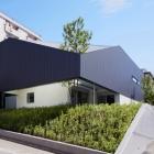 Maison Résidence japonaise moderne transpercée par un arbre : TY House par Yo Yamagata